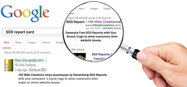 SEO Reports improved marketing efforts