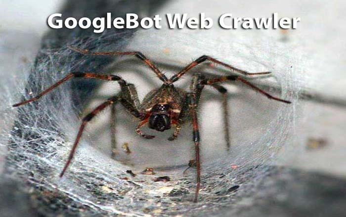 How Google Crawls your Website