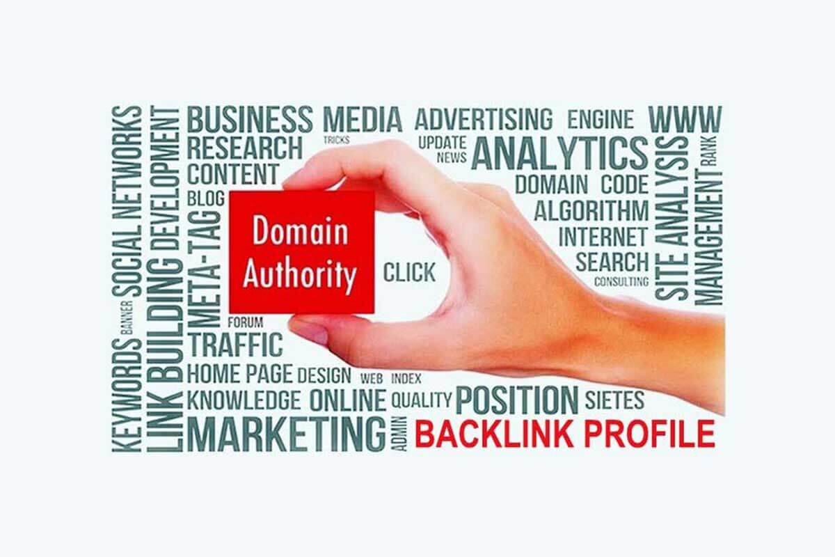 Gain Authoritative site Backlinks to Build Domain Authority