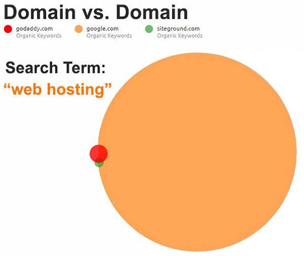 Conduct a domain authority test to see how your site compares to your competitors