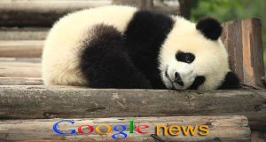 Google Panda 4.1 Update Explained by John Mueller