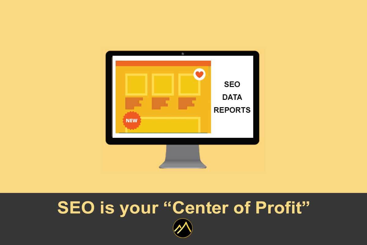 SEO is your Center of Profit - Look for your SEO Data-Backed Reports